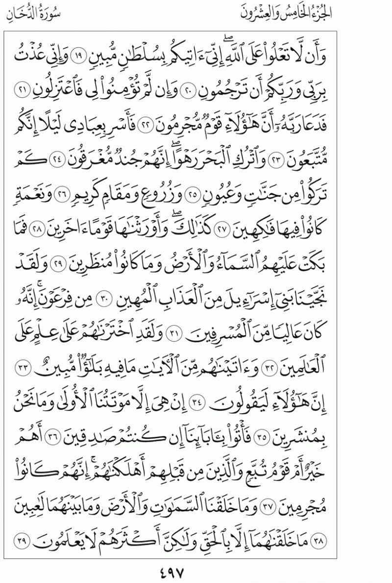 #القرآن_الكريم بالصور و ترتيب الصفحات - #سورة_الدخان صفحة رقم 497