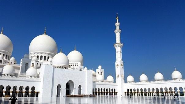 صور #مسجد #الشيخ_زايد في #أبوظبي #الإمارات - صورة 136