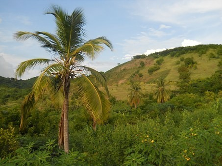 Photos from #Haiti #Travel - Image 20