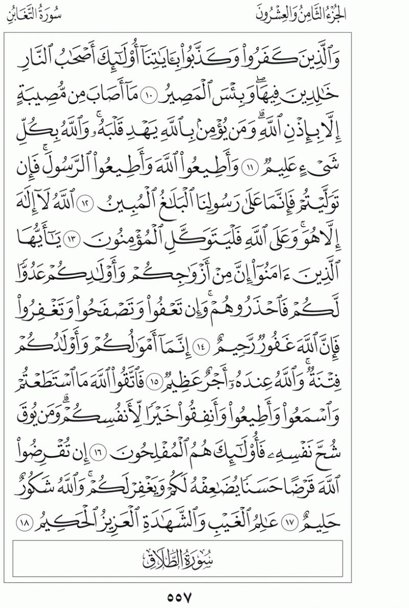 #القرآن_الكريم بالصور و ترتيب الصفحات - #سورة_التغابن صفحة رقم 557