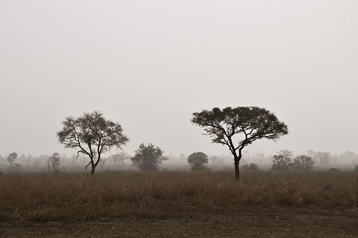 Photos from #Benin #Travel - Image 13