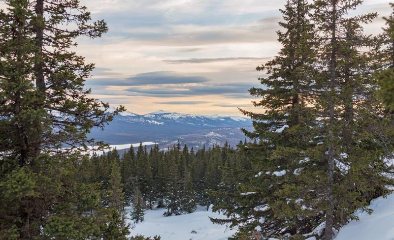 صور لـ #شتاء #المناظر_الطبيعيه #الجبال #طبيعة #ثلج #تأنق