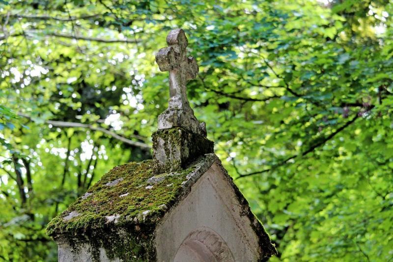 صور تحتوي #الحداد #قبر_الحجارة #تعبر #أوغسبورغ #مقبرة #طحلب