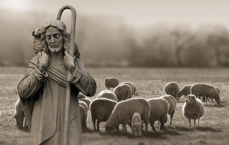 صور تحتوي #الراعي #خروف #الراعي #السيد_المسيح #دين #إيمان
