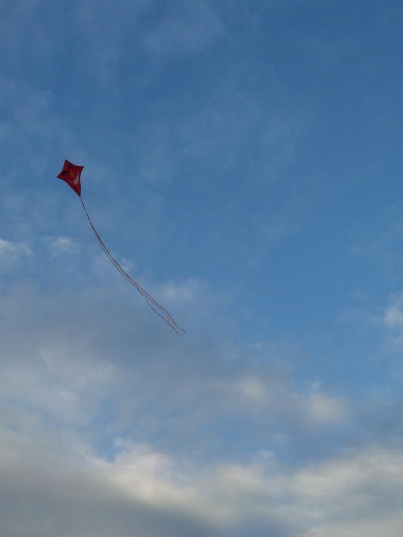 صور تحتوي #سماء #ارتفاع_التنين #ألعاب_الأطفال #التنين #هواء #ترتفع #طيران