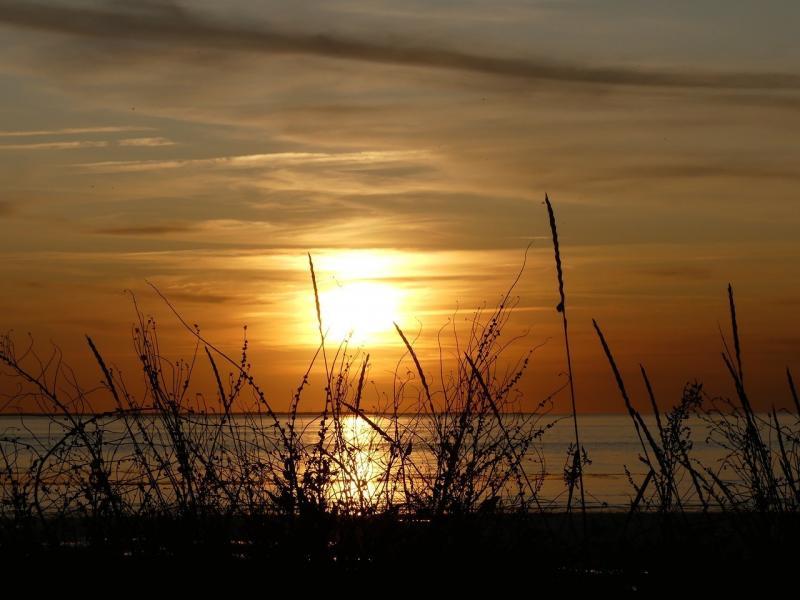 صور تحتوي #بحر #طبيعة #الأفق #شمس #شاطئ_بحر #سماء #محيط #الشفق