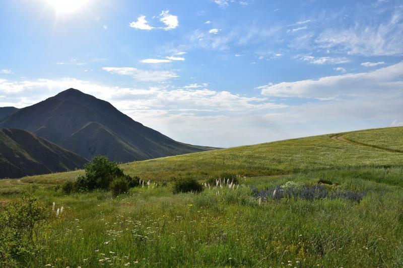 صور لـ #جبل #الجبال #طبيعة #حقل #أرض #سماء