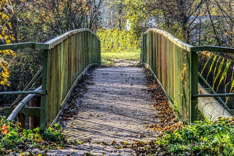 صور تحتوي #جسر #حديدي #صلب #حديد #انتقال #أخضر
