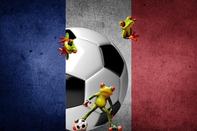 صور لـ #بطولة_اوروبية #كرة_القدم #فرنسا #2016