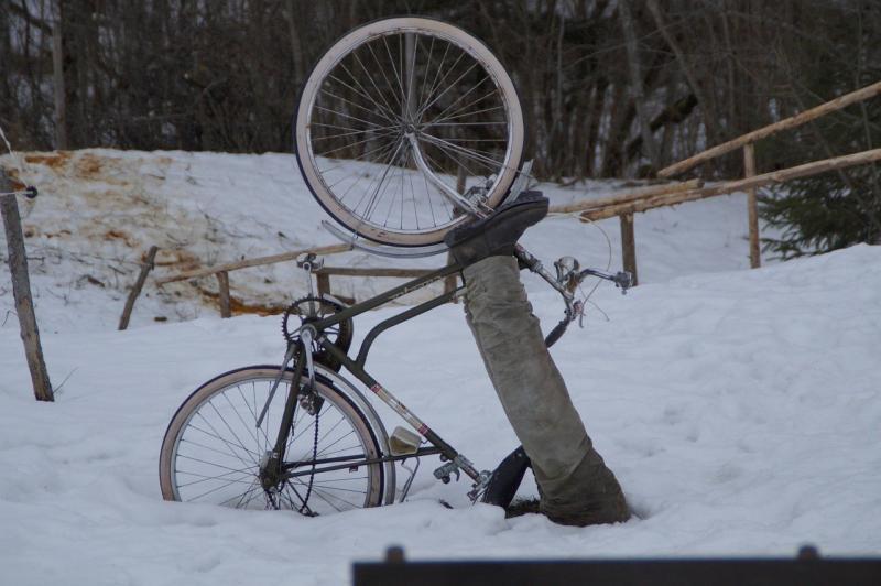 صور لـ #ركوب_الدراجات #راكبي_الدراجات #عالق #خريف #دراجة_هوائية #ثلج #حادث