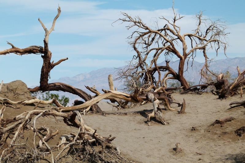صور تحتوي #المناظر_الطبيعيه #وادي_الموت #رمل #الدعك #الكثبان #مشهد