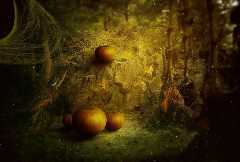 صور تحتوي #يوم_الاجازة #يقطين #غابة #داكن #عيد_الرعب #خيال