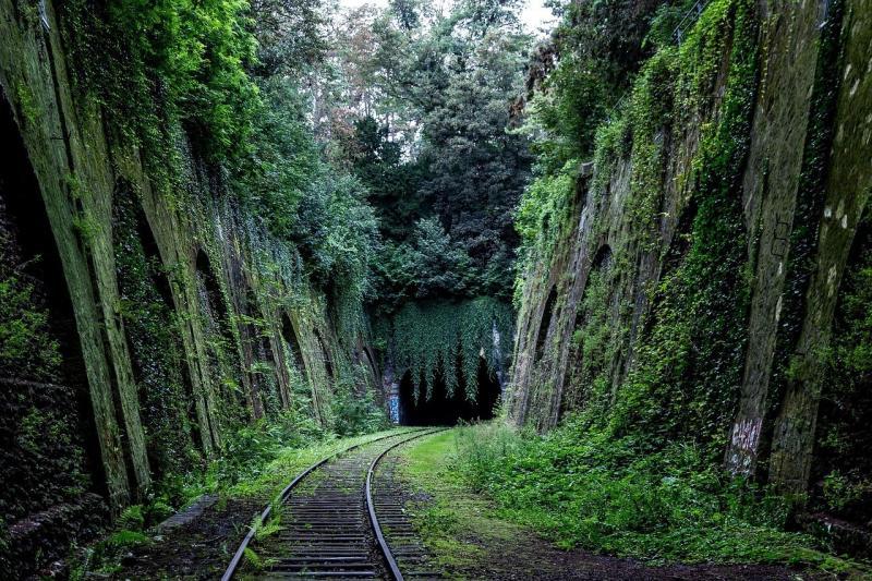 صور تحتوي #وسائل_النقل #أخضر #سكة_حديدية #مسارات_القطار #طريق_السكك_الحديدية