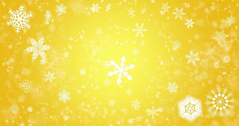 صور تحتوي #بتلات #الثلج #الخلفية #شتاء #ثلج