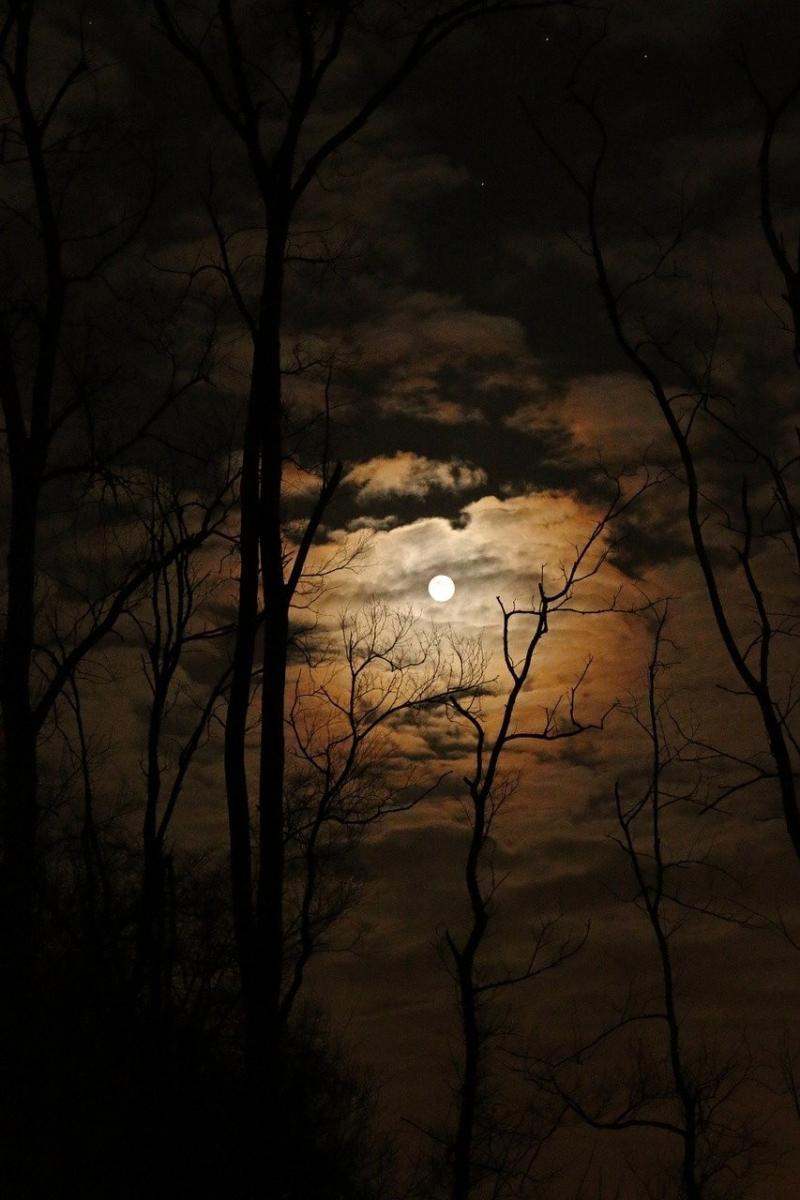 صور تحتوي #داكن #ليل #اكتمال_القمر #سماء #مرعب #ممتلئ #سحاب #القمر