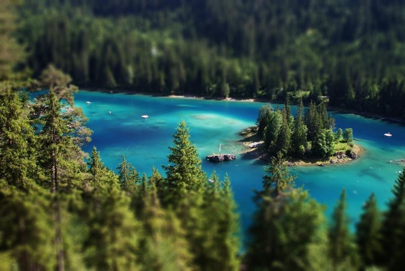 صور تحتوي #ماء #بحيرة #طبيعة #الأشجار #Alpsee #غابة #المناظر_الطبيعيه