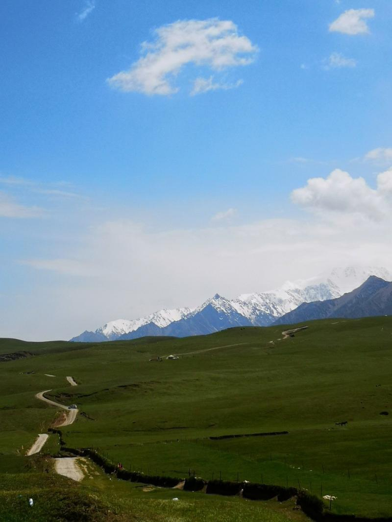 صور تحتوي #جبل_الثلج #الطريق_السريع #البراري