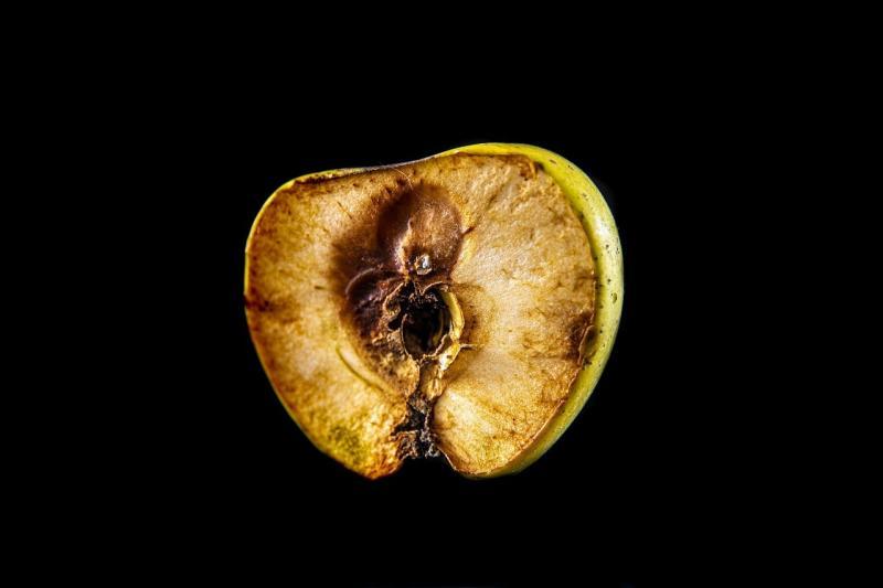 صور تحتوي #طعام #الصحة #تفاحة #حصاد #فاكهة #الفيتامينات #التكاليف