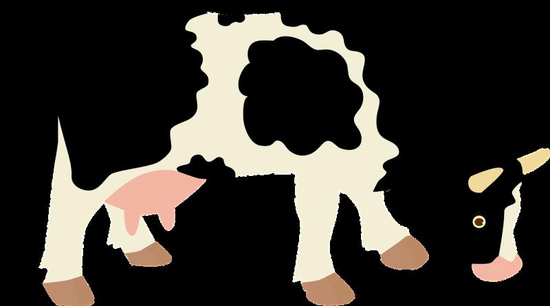 صور تحتوي #حيوان #بقرة #حليب #اقتصاد #الصفحة_الرئيسية #مزرعة #بقرة_حلوب