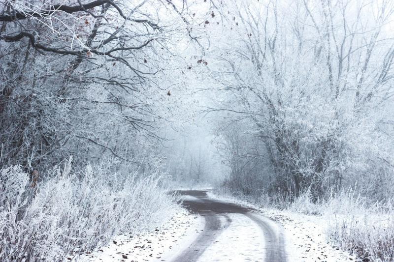 صور تحتوي #الطريق #الأشجار #البرد #ثلج #ريفي #شتاء #الريف