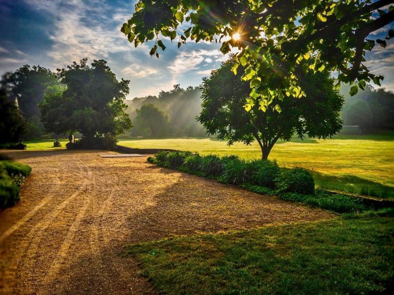 صور تحتوي #شمس #المناظر_الطبيعيه #مشهد #طبيعة #شجرة #شروق_الشمس #سماء