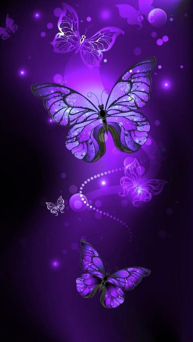 #خلفيات عالية الوضوح ل #فراشات #Butterflies #فراشة #حيوانات - 51