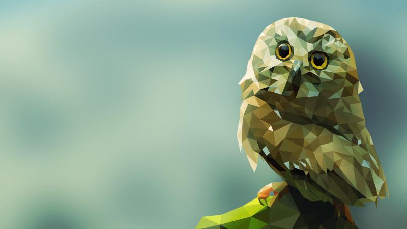#خلفيات #طيور مرسومة بطريقة هندسية #Geometric_Birds عالية الوضوح #حيوانات - 8